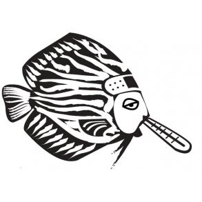 Fiske Pleje